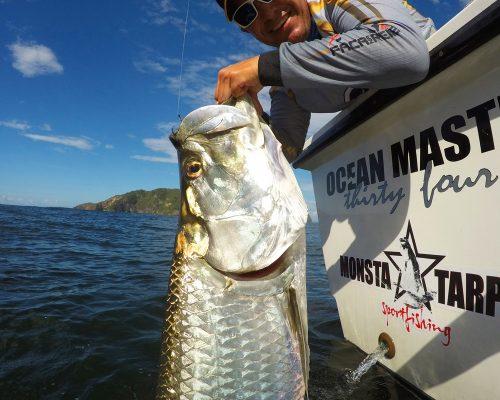 ©Monsta Tarpon Sport Fishing_